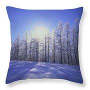 Japanese Larch Hokkaido Japan Throw Pillow