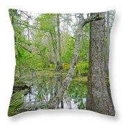 Jean Lafitte Swamp Throw Pillow