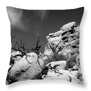 Joshua Tree 2 Throw Pillow