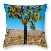 Joshua Tree 28 Throw Pillow