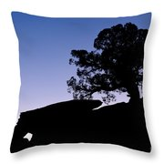 Juniper Tree At Dawn Throw Pillow