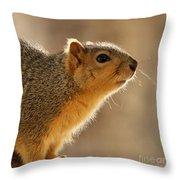Just Curious Throw Pillow