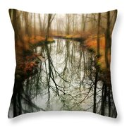 Just One Wish Throw Pillow by Diana Angstadt