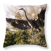 Juvenile Blue Heron Throw Pillow