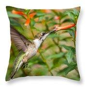 Juvenile Male Ruby-throated Hummingbird Throw Pillow