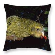 Kakapo Feeding On Supplejack Berries Throw Pillow