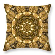Kaleidoscope 45 Throw Pillow