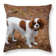 My Sweet Daisy Throw Pillow