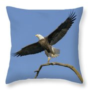 King Of The Sky 3 Throw Pillow