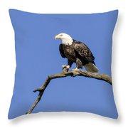 King Of The Sky Throw Pillow