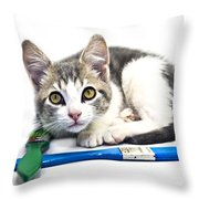 Kitten With Paint Brushes Throw Pillow