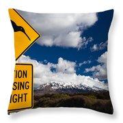 Kiwi Crossing Road Sign And Volcano Ruapehu Nz Throw Pillow