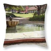 La Purisima Fountain Throw Pillow