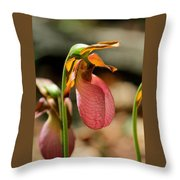 Lady Slippers At Moore State Park 2 Throw Pillow