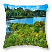 Lake Abanakee In The Adirondacks Throw Pillow by David Patterson