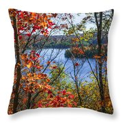 Lake And Fall Forest Throw Pillow
