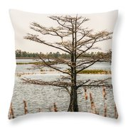Lake Mattamuskeet Nature Trees And Lants In Spring Time  Throw Pillow