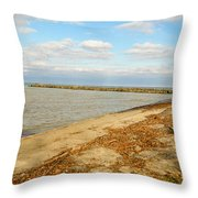 Lake Ontario Shoreline Throw Pillow