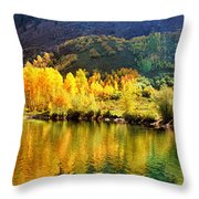 Lake Reflection In Fall  Throw Pillow