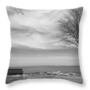Lake Tree And Park Bench Throw Pillow