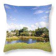 Lake Waratah In North-west Tasmania Australia Throw Pillow
