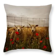 Lambs Throw Pillow