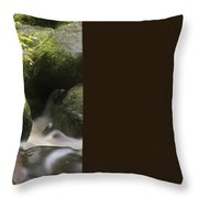 Landscape Of Becky Falls Waterfall In Dartmoor National Park Eng Throw Pillow by Matthew Gibson