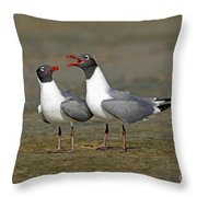 Laughing Gull Throw Pillow