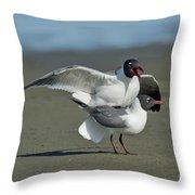 Laughing Gulls Throw Pillow