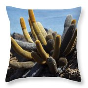 Lava Cactus Galapagos Throw Pillow