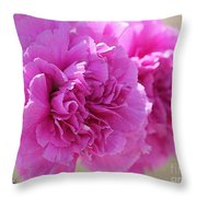 Lavender Carnations Throw Pillow