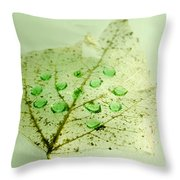 Leaf With Green Drops Throw Pillow