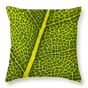 Leafy Details Throw Pillow