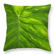 Leafy Green Throw Pillow