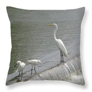 Learning To Fish Throw Pillow