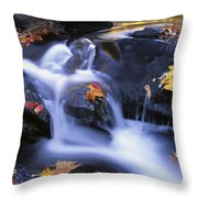 Leaves In Little River Great Smoky Throw Pillow