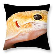 Leopard Gecko Eublepharis Macularius Throw Pillow