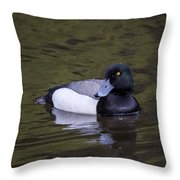 Lesser Scaup Throw Pillow