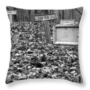 Letchworth Village Cemetery Throw Pillow