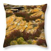 Lichened Rocks Throw Pillow
