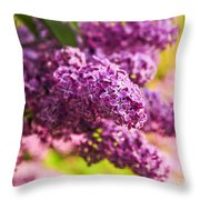 Lilacs Throw Pillow by Elena Elisseeva