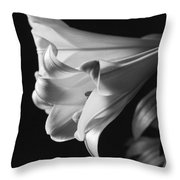 Lily 2 Throw Pillow