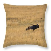 Lion On The Hunt Throw Pillow