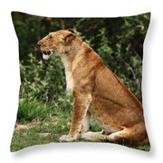 Lioness On The Masai Mara  Throw Pillow