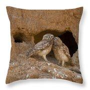Little Owl Athene Noctua Throw Pillow