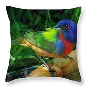 Living Rainbow Throw Pillow