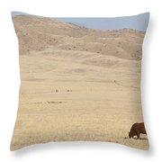Lone Bull In Grassy Field Throw Pillow