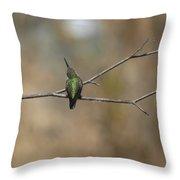 Lone Hummingbird Throw Pillow