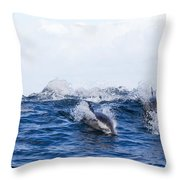 Long-beaked Common Dolphins Throw Pillow