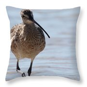 Long-billed Curlew Throw Pillow
